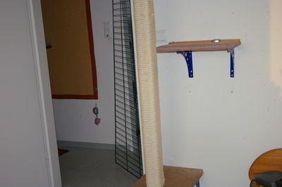 kratzbaum welches seil. Black Bedroom Furniture Sets. Home Design Ideas