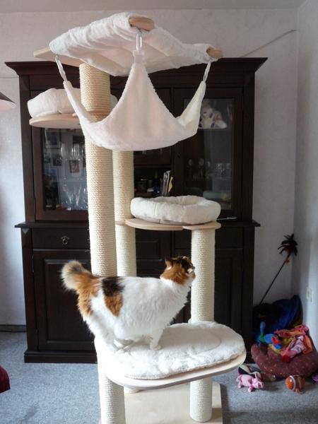 ein kratzbaum entsteht seite 11. Black Bedroom Furniture Sets. Home Design Ideas