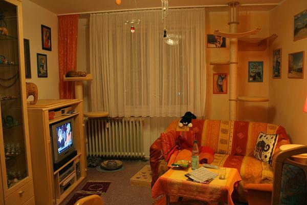 Wo stehen eure kratzb ume eventuell mit foto seite 3 for Wohnzimmer 22 grad
