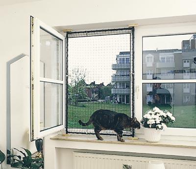 fensterschutz mit katzen oder fliegennetz seite 3. Black Bedroom Furniture Sets. Home Design Ideas