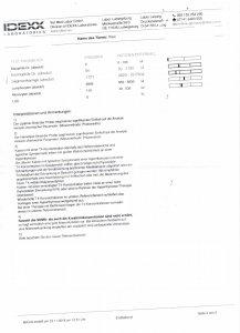 Seite 3.jpeg