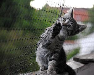 Balkon2-klein.jpg